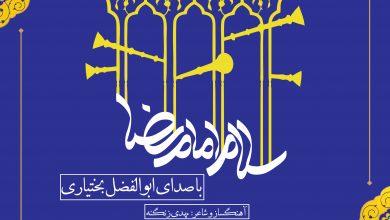 تصویر از نماهنگ سلام امام رضا(ع)